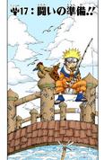 Capa do capítulo 17