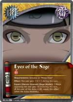 Ojos del Sabio HS
