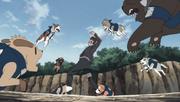 Os ninken atacando Kiba