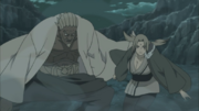 A y Tsunade preparados para detener a los jinchurikis