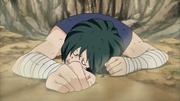 Suika derrotado