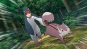 Namida tenta capturar um esquilo