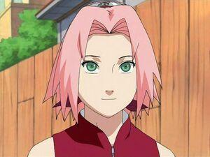 Sakura partie 2