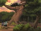 Naruto - Episódio 149: Qual a Diferença? Todos os Insetos Não São Parecidos?