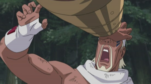 Garra de Hierro Anime