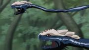 Invocation - Serpent bicéphale