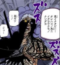 Receptor Negro (Zetsu Negro)