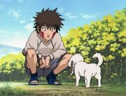 Kiba as a little child