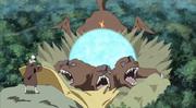 Nagato peleando con Naruto una vez más
