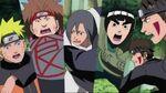Saga doce guardianes ninjas