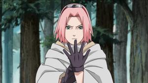 Sakura's Resolve