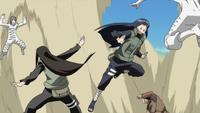 Hinata and Neji