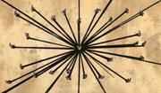 Lírio da Aranha Negra