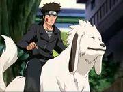 Akamaru junto a Kiba en la segunda parte