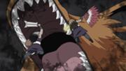 Kurama vs Kinkaku dan Ginkaku