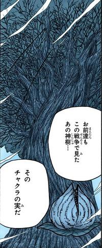 Dios Árbol Manga