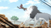 Sekki Fights Wolf
