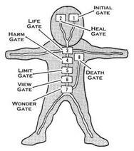 Biểu đồ vị trí của mỗi cổng