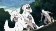 Kiba and Akamaru transform