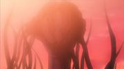 A imortalidade de Kakuzu