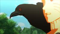 Mangekyō Sharingan do corvo (Game)