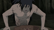 Madara vomita el trozo de carne de Hashirama