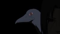 Mangekyō Sharingan do corvo (Anime)
