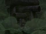 Senpô - Porte du Dieu de Lumière