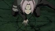 Técnica de Invocação (Sakura-Anime)