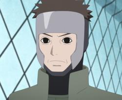 Yamato profilo 2