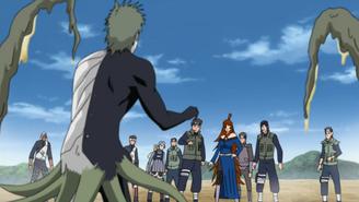 Mei vs Zetsu