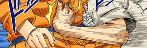 Palma Inferior Manga