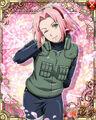 Sakura Kunoichi Contest