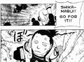 ShikaIno - Battle II