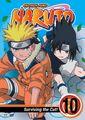 NARUTO Anime Volume 10