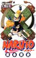 Naruto Manga Volume 17