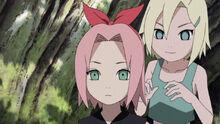 Ino-gaves-sakura-headband