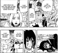 Sakura's reunion with sasuke - kage summit