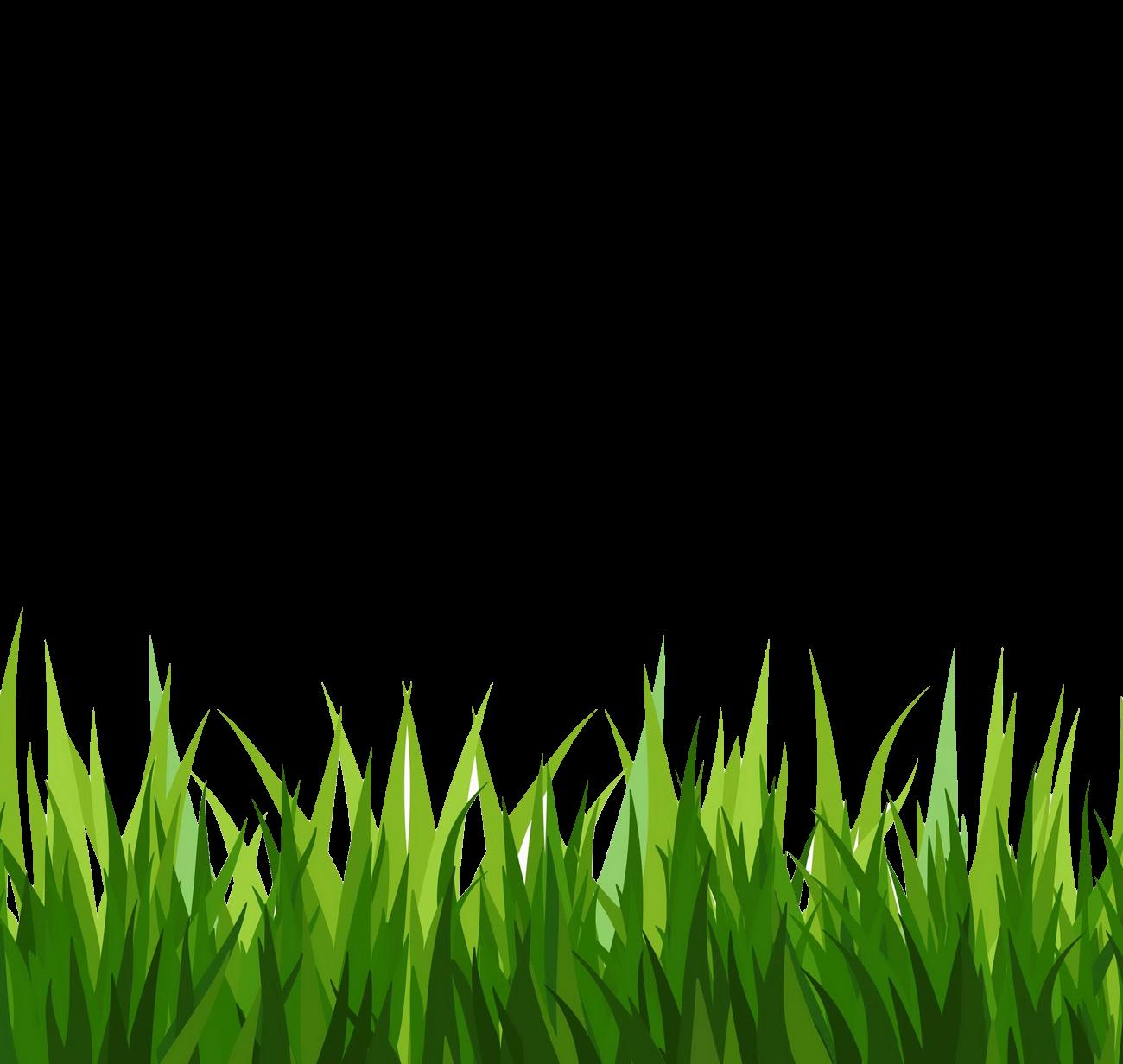 Hijiko Grass