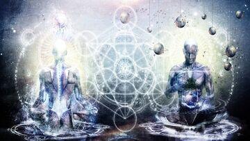 Rama Fisica