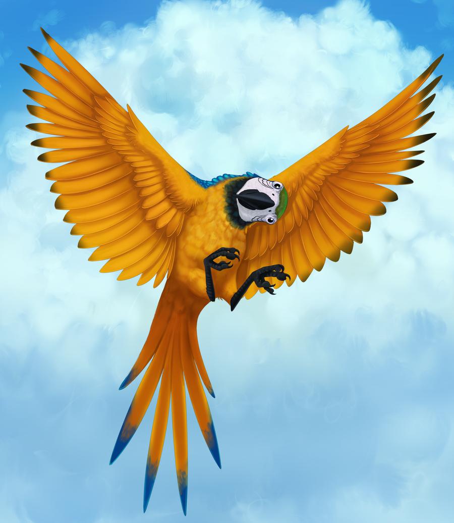 Parrots   Naruto Fanon Wiki   FANDOM powered by Wikia