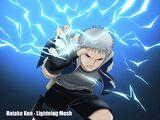 Lightning Mesh