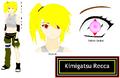 Kimigatsu Recca Profile by MidoriHihara07.png