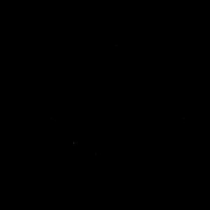 Hausa clan symbol