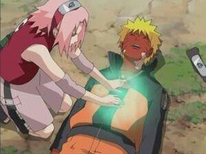 SakuraHealing