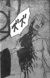 Meikai utilizing Yin-Yang Release
