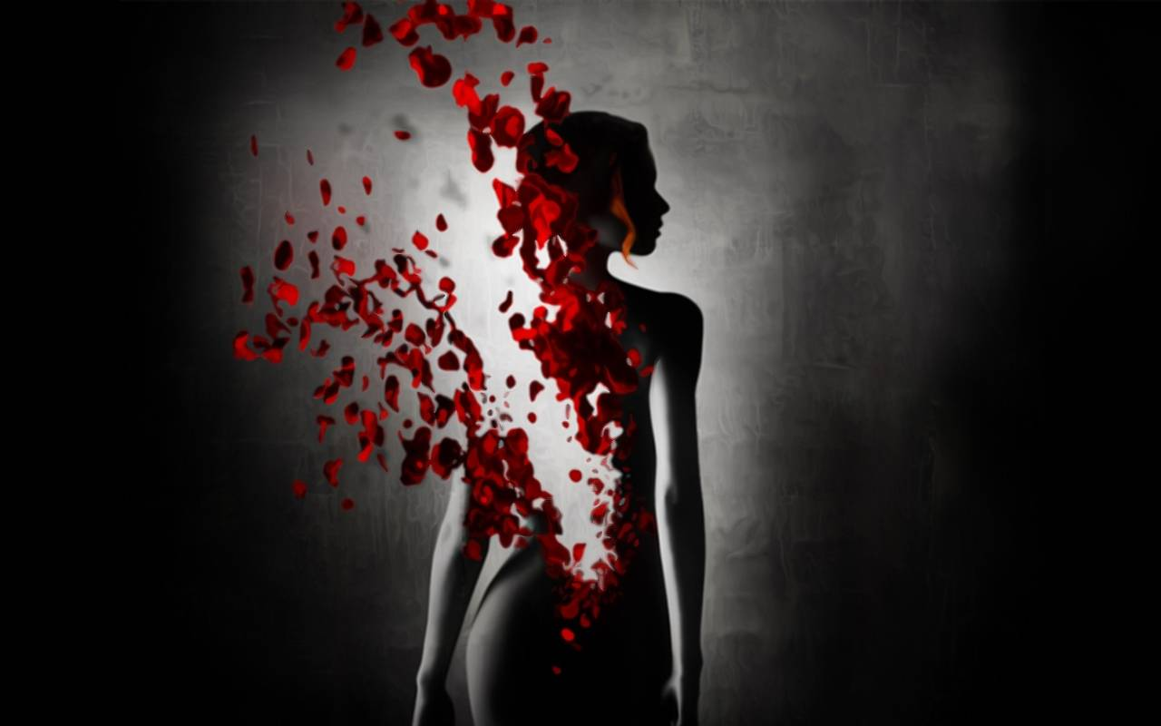 Image hd wallpapers black whitered wallpaper beautiful girl hd wallpapers black whitered wallpaper beautiful girl fantasy gray petals red roses 1280x800 wallpaper 1g voltagebd Choice Image
