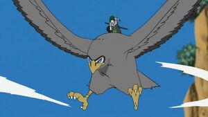 Takeo's Hawk