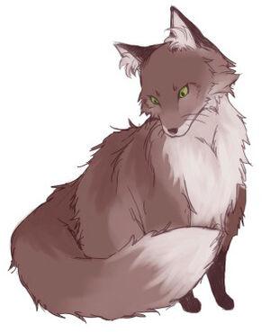 Koku-fox