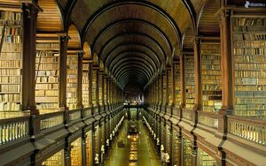 Large library, books 150549